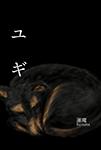 『ユギ』 sample image