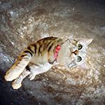『遊星ジャーナル海賊版』 sample image